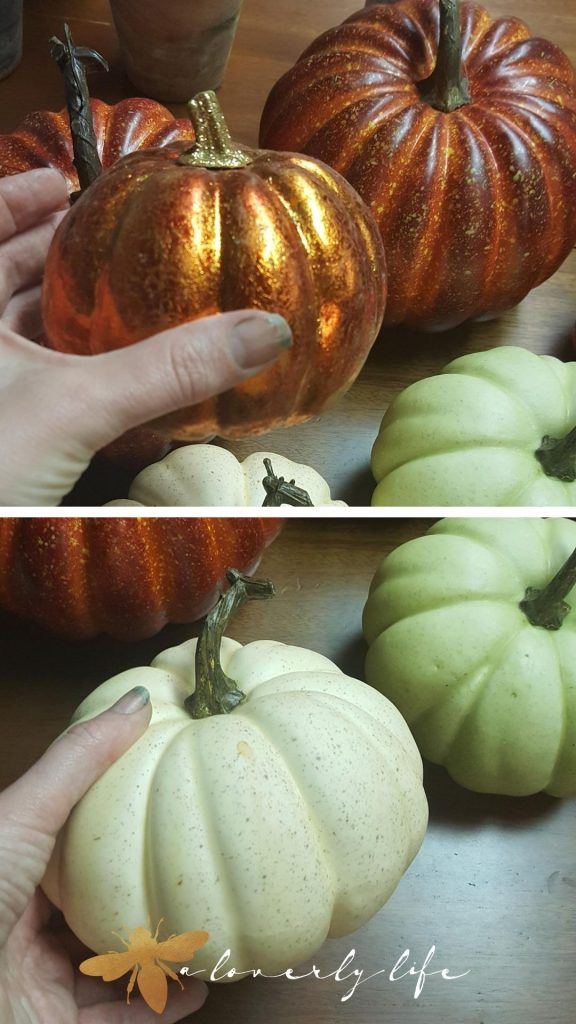 pumpkins for topiary
