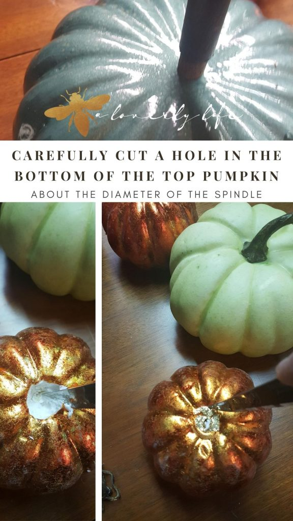 carefully cut a hole in the outer shell of the pumpkin