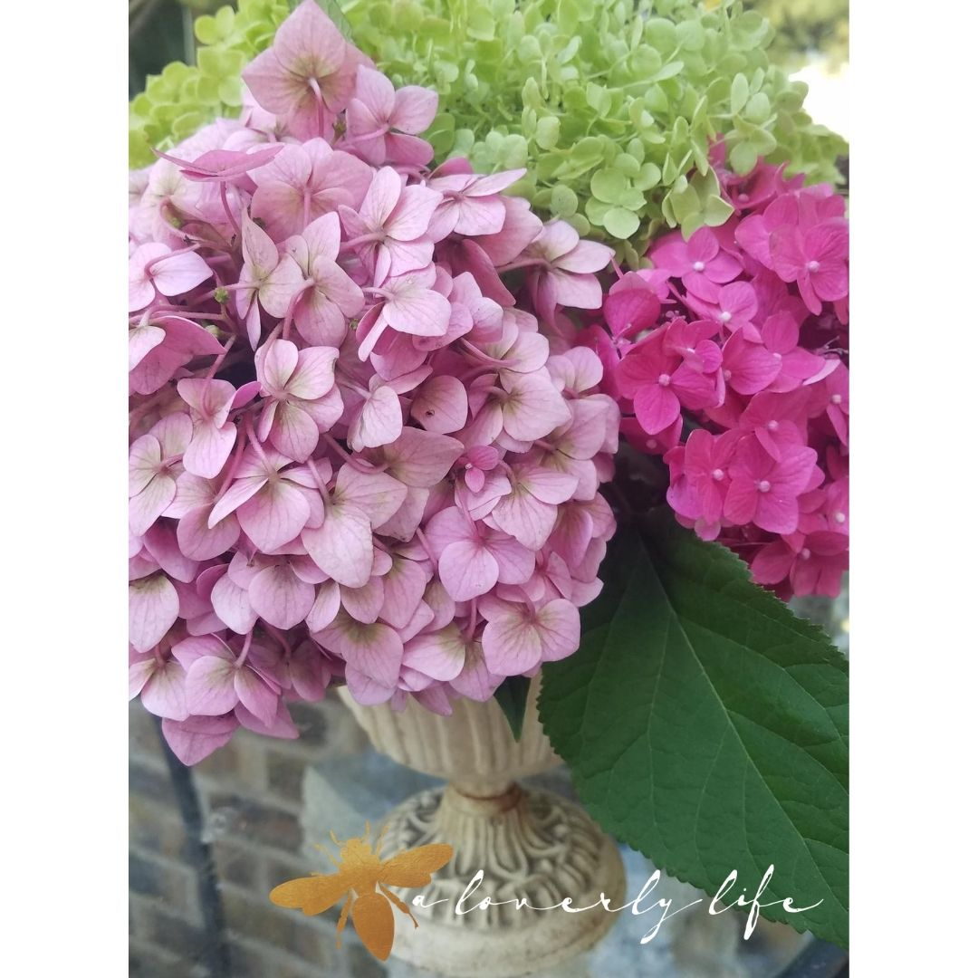 cut hydrangea floral arrangement