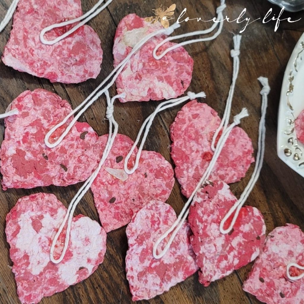 seed paper heart with cotton string